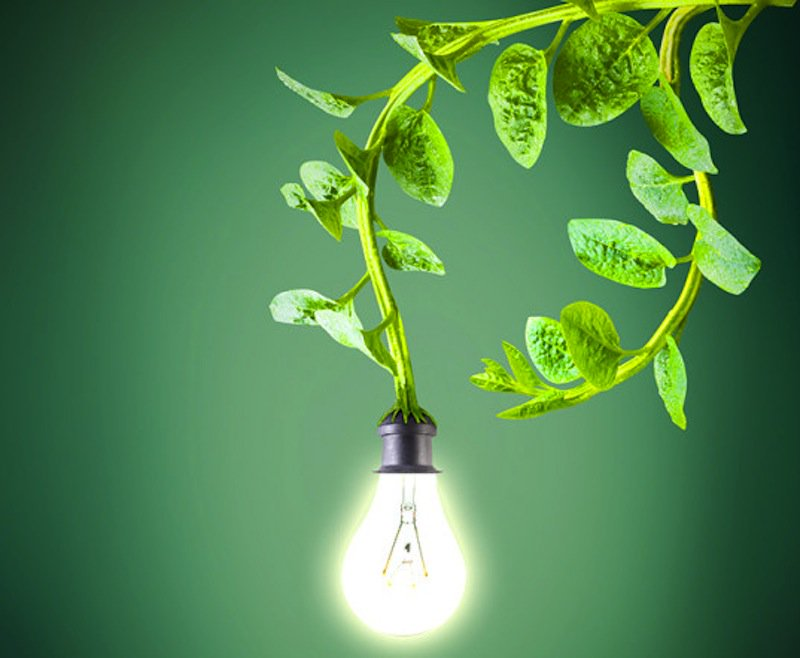Geração de energia através do Biodigestor!