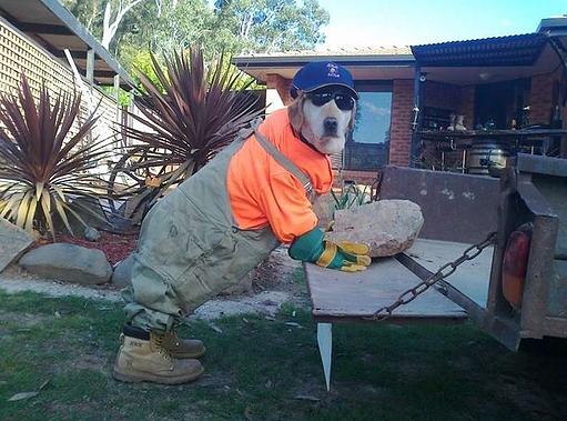 """Obras do """"Cão"""" Parte II: Os Erros Mais Estranhos Da Construção"""
