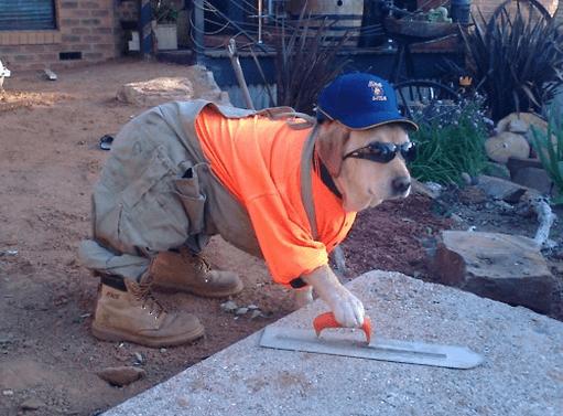 """Obras do """"Cão"""": Os Erros Mais Estranhos da Construção"""