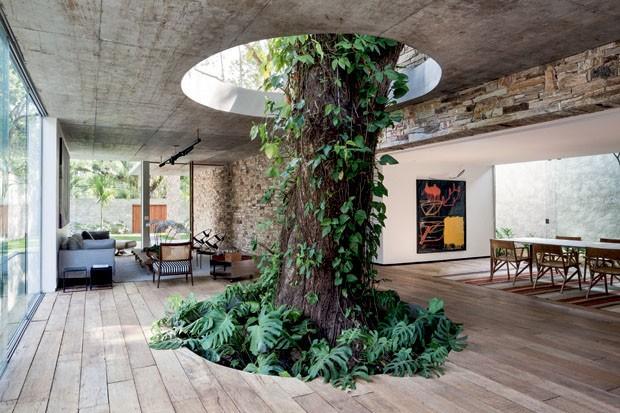 Inspiração: Um jardim interno todo seu